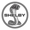Retro Shelby for Sale